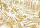 25-Goudmetallic