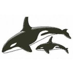 Orkas stempel - Encaustic Art
